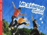 Mr. Raindrop