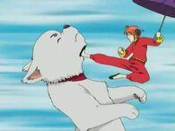 Sadaharu and Kagura Episode 10