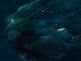 Great Cetacean