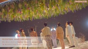 TEASER SEVENTEEN JAPAN 2ND SINGLE 「舞い落ちる花びら (Fallin' Flower)」初回限定盤C Blu-ray