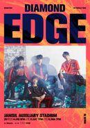 Diamond Edge Performance team(2017)