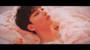TEASER SEVENTEEN - 舞い落ちる花びら (Fallin' Flower) MV Teaser