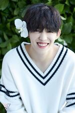 S.Coups Special Photo TEEN, AGE