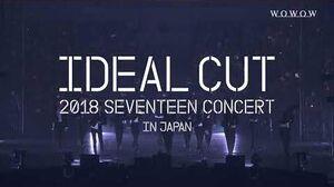SPOT WOWOW 「2018 SEVENTEEN CONCERT 'IDEAL CUT' IN JAPAN」