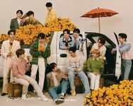 SEVENTEEN Your Choice ONE SIDE Ver.