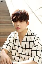 Al1 Photoshoot Teasers S.Coups1