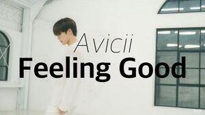 DINO'S DANCEOLOGY Avicii - Feeling Good