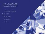 17 Carat/Gallery