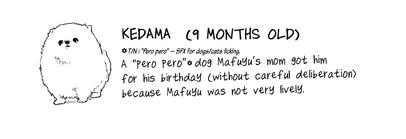 Kedama info