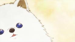 Kedama's eyes shining from the stars ending