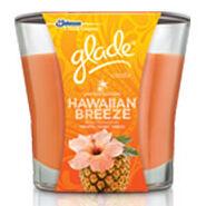 Glade-hawaiian-breeze
