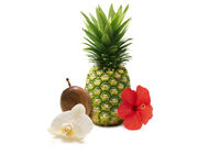 Hawaiian Breeze and Vanilla Passion Fruit.jpg