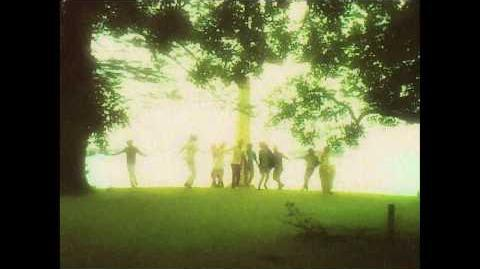 Edward_Sharpe_and_the_Magnetic_Zeros_-_Home_Official_Video