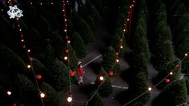 Glee-christmas-pic-2.jpg