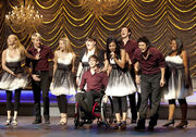 Glee-2-ep-9-special-education-sectionals.jpg