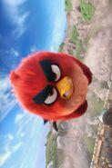Angry-Birds-1024x682