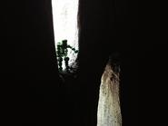 Argen9-cave1