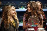 Girl Meets Fish.jpg
