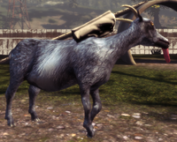 Hitchhiker Goat.png