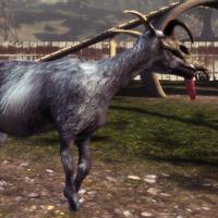 Goat Queen Tabber.png