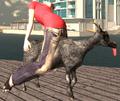 Goat Rider