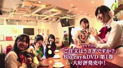 TVアニメ「ご注文はうさぎですか?」 Blu-ray&DVD発売カウントダウン動画〜発売日〜