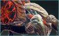 Blast Spider Icon GE3.png