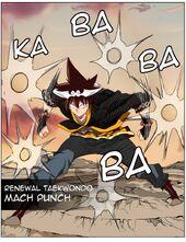 Renewal Taekwondo Mach Punch
