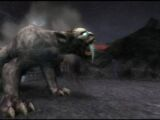 Bestie di Morfeo