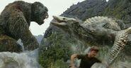 King Kong (14)