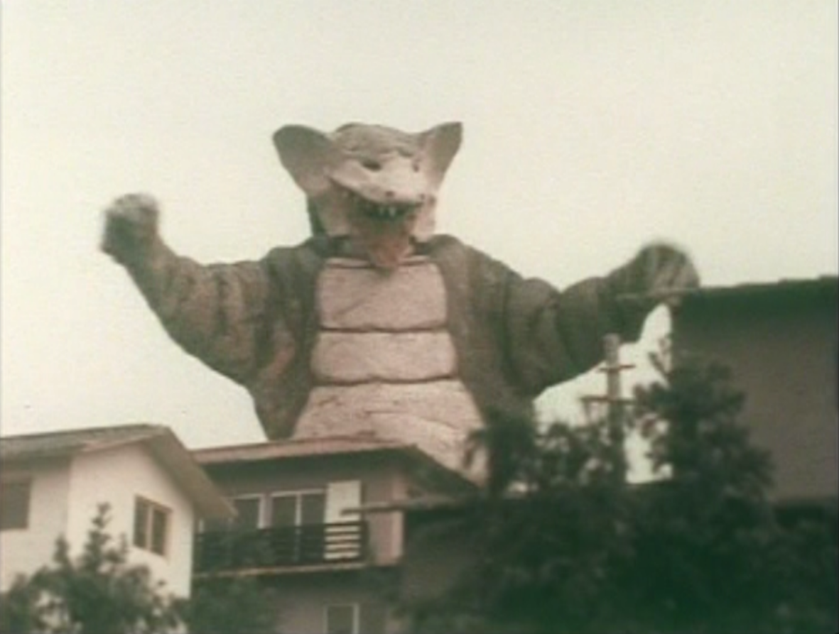 Foksaurus