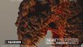 The Making of Shin Godzilla - August 23, 2015 - 00009