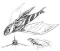 Concept Art - Rebirth of Mothra 2 - Aqua Mothra 6