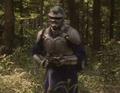 Guyborg 2