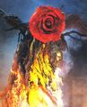 Biollante Rose