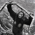 Godzilla.jp - 3 - ShodaiKong King Kong 1962