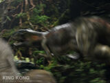 Venatosaurus/Gallery