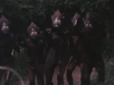 Minions of Maoh