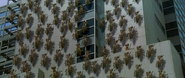Godzilla vs. Megaguirus - Hundreds of Meganulons