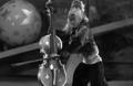 Cellolin monkey