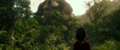 GvK - Forest Landscape