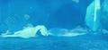 Screenshot 2021-04-06 11.53.29 PM