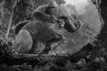 Kong vs. T-Rex