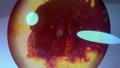 Godzilla City on the Edge of Battle - Trailer 2 - 00036