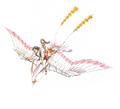 Concept Art - Yamato Takeru - Amano Shiratori 1