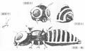 Concept Art - Godzilla vs. Mothra - Mothra Imago 3