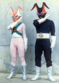 Flasher Black Mask and Pink Mask