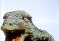 Go! Godman - Episode 6 Godman vs. Gorosaurus - 11 - RAH!