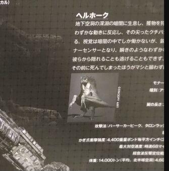 Godzilla vs. Kong (Japanese release) pamphlet