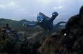 Goliath flying